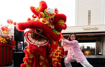 Chinese Lunar New Year celebrations held in Los Angeles