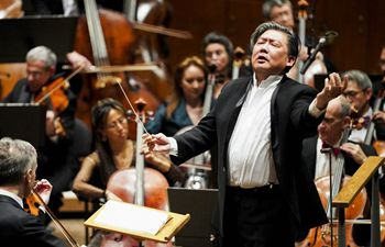 New York Philharmonic celebrates Year of the Rat with annual concert