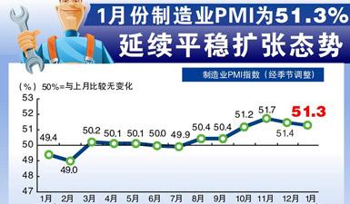 圖表:1月制造業PMI為51.3% 延續平穩擴張態勢