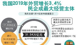 我國2019年外貿增長3.4% 民企成最大經營主體