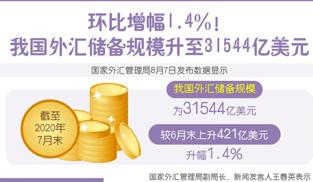 環比增幅1.4%!我國外匯儲備規模升至31544億美元