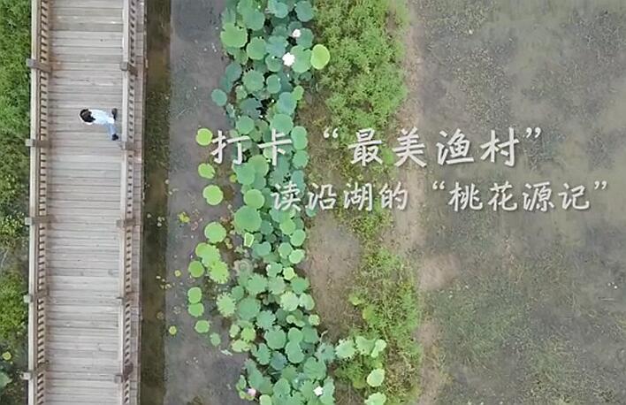"""打卡""""最美漁村"""" 讀沿湖""""桃花源記"""""""