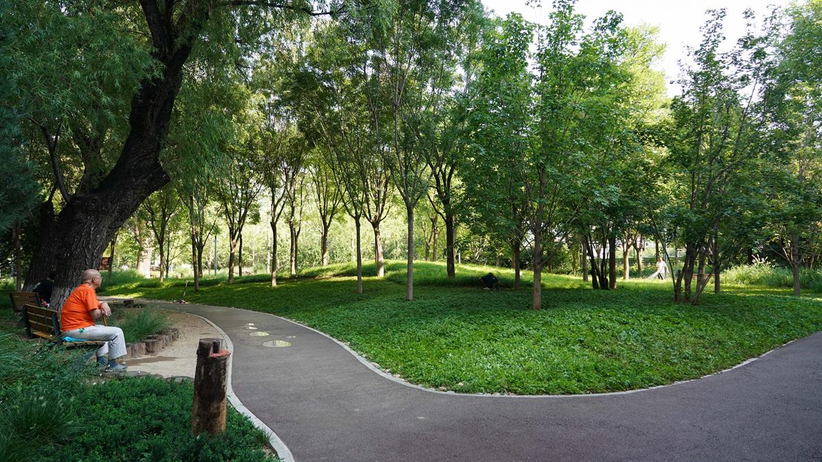 北京:老百姓家門口的綠地公園