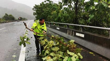 受臺風影響浙南部分高速封閉 溫州路面嚴重積水