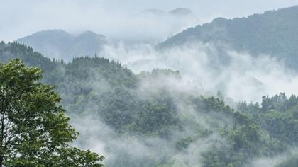 雲霧繞清平 秀美如畫境