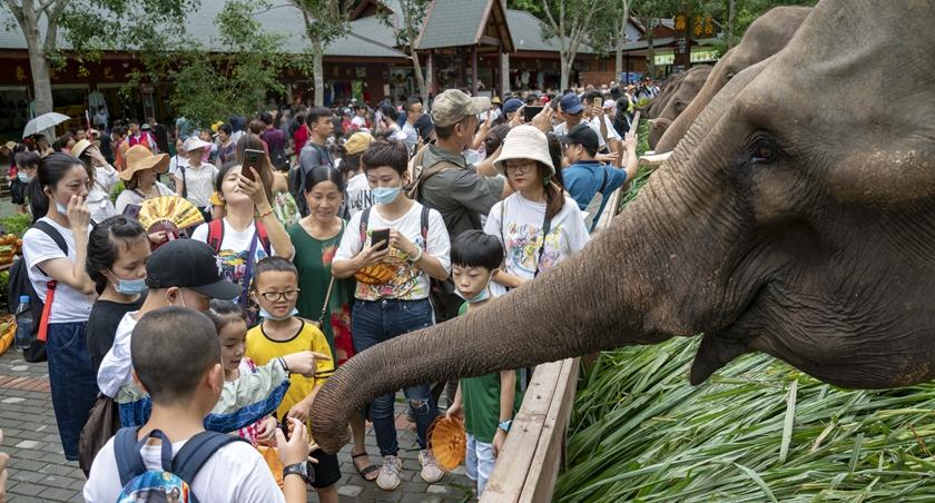雲南330家A級旅遊景區恢復開放